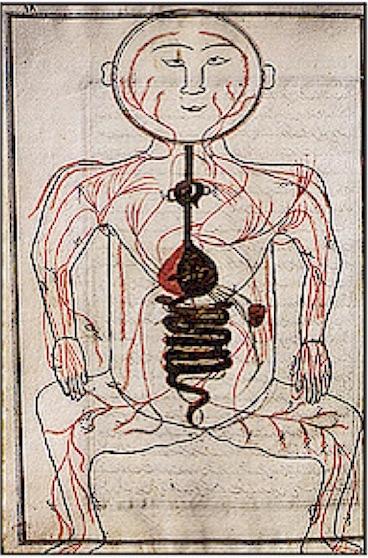 La circulación pulmonar, un descubrimiento árabe. Ibn Nafis