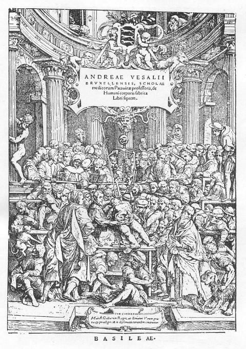 SAC | Sociedad Argentina de Cardiología El siglo XVI y la revolución ...