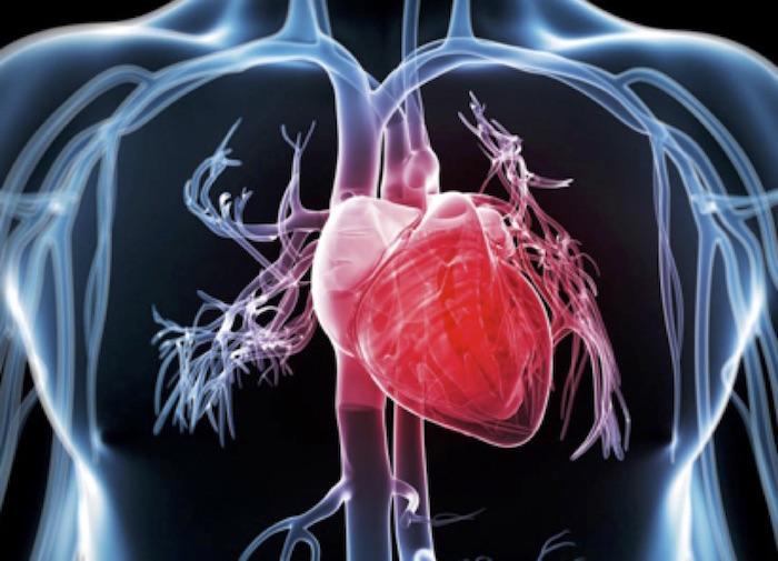 Nuevo Consejo de Cardioncología en la SAC